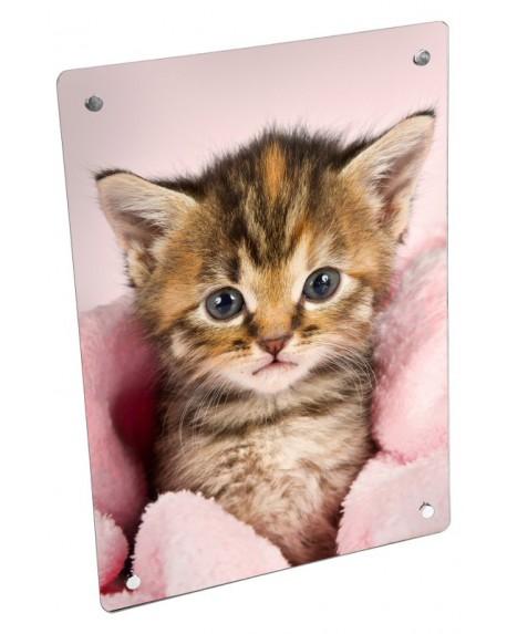 Grzejnik szklany ze zdjęciem kotek