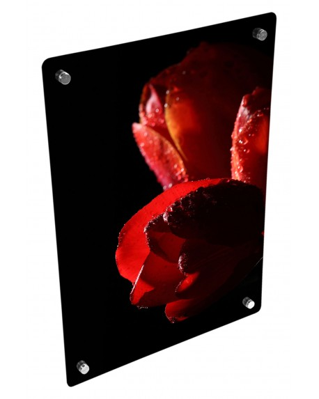 Grzejnik szklany z nadrukiem róży